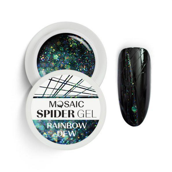 Spider_rainbow-dew